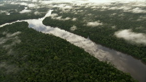 River Aerial View